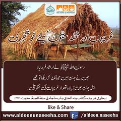 Good News for Poor People (Ad'deen u Naseeha) Tags: goodnews poorpeople sahihbukhari hadith3241