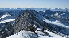 Simonyschneide 3440m (ernst.weberhofer) Tags: tirol dolomiten simonyspitze quirl hohetauern malhamspitze