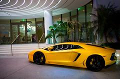 Lamborghini Aventador (amm6587) Tags: art beach d50 nikon florida miami south basel nikond50 exotic miamibeach lamborghini supercar sobe v12 carphotography lambo artbasel autophotography nikonshooters aventador lamborghiniaventador artbasel2014