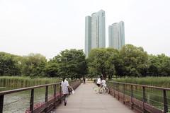 Through Seoul Forest (lilasyuri) Tags: park light summer nature forest buildings landscape spring cityscape south korea korean journey harmony seoul t paysage parc printemps fort core coren soul