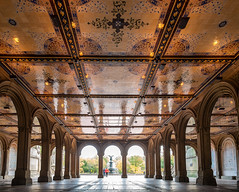 Bethesda Terrace, Central Park New York (BrianEden) Tags: nyc autumn ny newyork detail fall fountain leaves architecture tile fuji unitedstates terrace centralpark manhattan arches ceiling foliage fujifilm bethesda bethesdaterrace xpro1 brianedenphotography