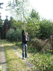 kerb2006_017