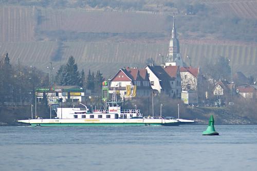 Rheinfähre bei Nierstein