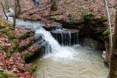 At Adams Falls - Short Springs State Natural Area - Jan. 2015 (mikerhicks) Tags: winter usa landscape geotagged unitedstates hiking tennessee waterfalls tullahoma adamsfalls lakehills tennesseestateparks shortspringsstatenaturalarea canon7dmkii sigma18250mmf3563dcmacrooshsm geo:lat=3541818500 geo:lon=8618429167