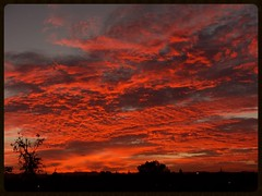 Shepherds Delight (Zelda Wynn) Tags: sunset red nature weather auckland cloudscape sunsetclouds shepherdsdelight weatherwatch zeldawynnphotography