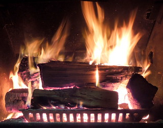 Nothing like relaxing by a warm fire on a cold day.