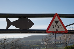 Beware of the 7' fish getting stuck (Fran Hollywood Autosportpics.com) Tags: fish mountains sign warning shark humour northernireland barrier carpark mournemountains heightrestriction mournes warrenpoint