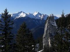 Pillar near Pürschling (bookhouse boy) Tags: schnee winter snow mountains alps berge alpen 2015 pürschling schleifmühle ammergaueralpen unterammergau pürschlinghaus augustschusterhaus 13februar2015