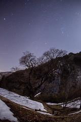 春を待つ。。。 2015_02_24 (suka0421) Tags: 星空 星景 駒つなぎの桜 阿智村