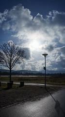 against sun (SpotShot) Tags: panorama vertical pano sony 28 mm fe freiburg 70 oss 2870 vertikal freiburgimbreisgau α7 f35–56 ilce7 sonyα7 sel2870 sonyfe2870mmf3556 28–70 sony2870mmf3556
