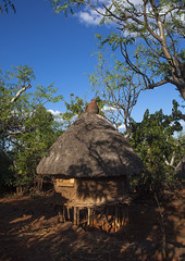 Konso Tribe Traditional Houses With Pots On The Top, Konso, Omo Valley, Ethiopia (Eric Lafforgue) Tags: poverty africa roof house tree home vertical outside outdoors photography community day village outdoor nobody nopeople tribal unesco worldheritagesite pot hut homemade simplicity pottery omovalley homestead tradition thatchedroof ethiopia tribe cultures domesticlife anthropology developingcountries worldheritage lifestyles hornofafrica omo eastafrica ruralscene fulllenght colorpicture nonurbanscene konso colourimage indigenousculture africanculture builtstructure residentialstructure colourpicture ethio1403810