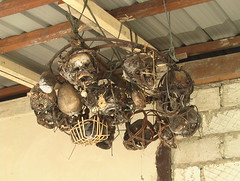 The Headhunters Collection of Skulls