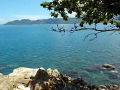 Koh Samui beach life (soma-samui.com) Tags: ocean thailand kohsamui