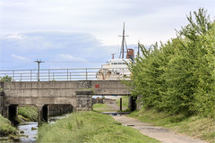 Photo of Duke of Lancaster #11