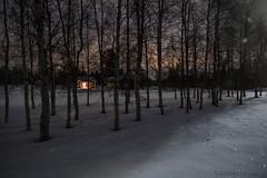 60-Moonlight_Cottages4 copy (Beverly Houwing) Tags: snow building night forest suomi finland frozen fullmoon lapland moonlight kukkola bungalow kukkolankoski