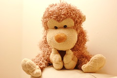 ..... (Astrida Simane) Tags: photography canon light evening toy monkey