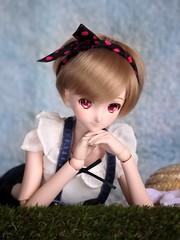 P1240978 () Tags: doll dd volks dds dollfiedream rankalee