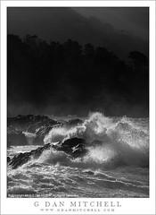 Winter Surf, Mountains (G Dan Mitchell) Tags: ocean california park blackandwhite usa mist seascape mountains nature monochrome fog america dark landscape surf waves state pacific crash north reserve spray wash pointlobos