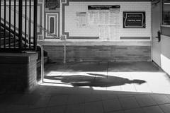 Central Park (John St John Photography) Tags: timewarnercenter 59thstreet subwaystation mta centralpark streetphotography candidphotography shadow silhouette stairs blackandwhite blackwhite bw