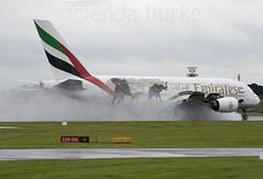 Emirates A6-EDG 9-7-2016 (Enda Burke) Tags: emirates emiratesairline arabemirates unitedarabemirates uae egcc omdb dubai dxb avgeek aviation a380 airbusa380 superjumbo unitedforwildlife spray rain mist arrival canon canon7dmk2 7dmk2 7d manchesterairport manchester man manc manairport manchesterrunwayvisitorpark manchestercity m