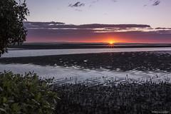 Sun Star (Ancon0031) Tags: sunrise sunstar nudgee beach