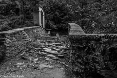 ...crossing the bridge Pruno (Roman_77) Tags: bridge ponte pruno stazzema apuane toscana blackandwhite blackwhite biancoenero bianconero mediceo romanico pietre italia nikon d750 roman77