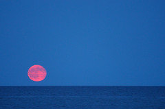 July 2016 moonrise over East Hampton   DSC_6496_7153 subtitled: primordial you (Paws2008) Tags: moon moonrise georgicabeach easthampton nohumans sand ocean nopeople night full pink orange blue july summer 2016 nikon d700 70300mm nature sea horizon