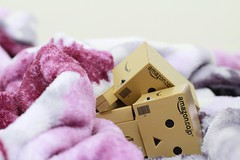 Good Night, Doha. (karyll ) Tags: danbo danboard revoltech amazon kawaii toys