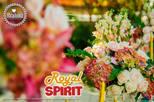 Braham-Wedding-Concept-Portfolio-Royal-Spirit-1920x1280-23