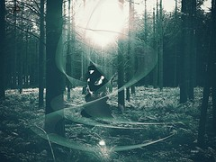 Yaamak iin hayallere, gsterie, baskya yer yok, sadece zgrle ve sevgiye ihtiya var.  Jewel *** #photography #forest #edit #art #collage #women #graphicdesign #graphicdesigner #effect #blackandwhite #dream #fantastic #people #artwork #portrait #fr (mrbrooks2016) Tags: blackandwhite illustration freeart effect collage graphicdesign photography dream forest artwork edited photodesign hdr art portrait graphicdesigner edit poster fantastic women people
