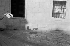 (Philip Dygeus) Tags: diafine dubrovnik ilfordpanf kroatien leica50summiluxmasph11891 leicam4 nikoncoolscan9000