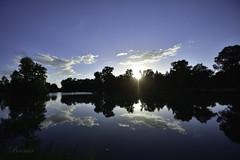 tang du Zich, Molsheim, France. (boomer_phil) Tags: contrejour nikon d500 eau etang soleil nuages trees reflets couleurs bleu sky clouds
