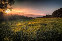 Sunset Views (lutzheidbrink) Tags: nikon d5000 sunset landscape naturephotography germany travel travelphotography