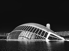 city of sciences 2 (FloBue) Tags: 2016 valencia spanien spain spagna architettura architektur architecture blackandwhite biancoenero schwarzweiss blacksky cityofsciences olympus silverefexpro calatrava
