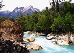 Naturaleza,Rio Blanco,Hornopiren,Carretera Austral,Patagonia Chile (Gabriel mdp) Tags: naturaleza paisaje landscape rio blanco parque nacional hornopiren carretera austral patagonia chile bosques contrastes nature sur montaas
