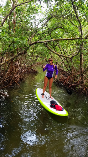 10_18_16  Lido Key paddleboard Tour 03