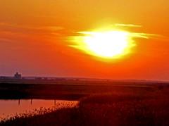 Rusanda Sunset (L.L.V.) Tags: rusanda lake banja spa melenci vojvodina srbija serbia national park birds nature beautiful extraordinary lovely travel tourism destination