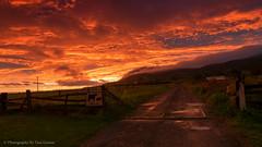 Yarrahapinni Sunset (Photography By Tara Gowen) Tags: beautiful orange nikon australia nsw taragowen photographybytaragowen tokina beautifulsky road countryscene