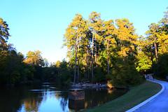 Duke Gardens (WillFastcore) Tags: dukegardens
