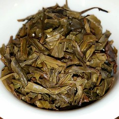 Heavy handed Yiwu brews. What's in your cup? (teaformepleasenicole) Tags: tea