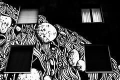 """Inchiostro Sui Muri - TELLAS: """"Alpi Marittime"""" - Foto di: Ugo Galassi (Inchiostro Festival) Tags: ugogalassi ugogalassinet wwwugogalassinet inchiostrofestival inchiostro streetart murale socialstreet writers art urban inchiostrooff inchiostrosuimuri wwwinchiostrofestivalcom"""