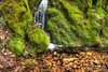 Emerald Trickle (JBartlettPhotog) Tags: california nature water creek forest river landscape landscapes waterfall moss unitedstates outdoor naturallight marincounty novato