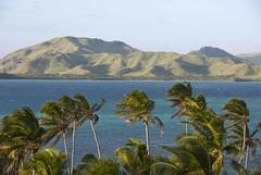 Pacific deforestation (RubénRamosBlanco) Tags: naturaleza nature fiji landscape island pacific south paisaje palmeras palm tropical sur islas pacífico deforestation yasawas deforestación