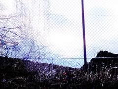 041#Vandoeuvre#les#nancy# (alainalele) Tags: france french cit north internet creative commons east council housing bienvenue et lorraine 54 nouvelle ville hlm licence banlieue moselle presse bloggeur meurthe paternit alainalele lamauvida