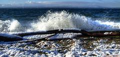 Crash (ScottElliottSmithson) Tags: blue winter white snow storm nature water canon spectacular eos washington waves wind crash wave windy driftwood 7d whidbeyisland pacificnorthwest pugetsound washingtonstate crashing admiraltyinlet islandcounty mutinybay eos7d dtwpuck scottsmithson scottelliottsmithson
