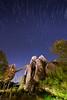 Animal Kingdom - Himalayan Escape (Jeff Krause Photography) Tags: park mountain expedition animal star unitedstates florida fav50 trails kingdom disney theme rollercoaster wdw yeti everest kissimmee himalayan escapes zong fav25 serka