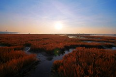 Marina Romea Sunset (Strocchi) Tags: sunset sky italy sun water canon tramonto cielo lensflare sole 8mm acqua hdr ravenna 2015 marinaromea eos400d