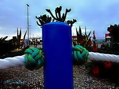Ns de Marinharia (#molio) Tags: ns pinhas marinharia