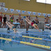 "CADU Natación'15 • <a style=""font-size:0.8em;"" href=""http://www.flickr.com/photos/95967098@N05/16032109123/"" target=""_blank"">View on Flickr</a>"