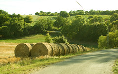 Rural France (trusler_james) Tags: road trees sun france tree sunshine rural landscape countryside farm sony harvest scenic sunny september fields hay bales cahors countryroad haybales eveing a350